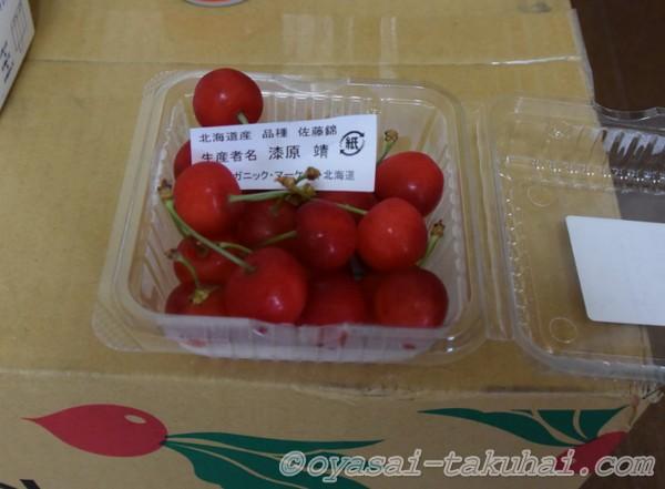 さくらんぼ 無農薬果物