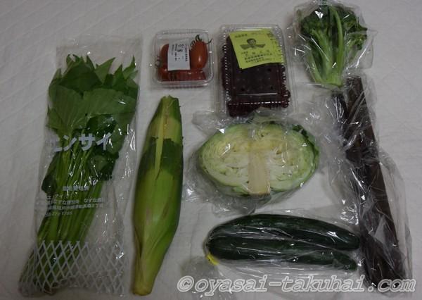 らでぃっしゅぼーや 野菜ぱれっと 内容