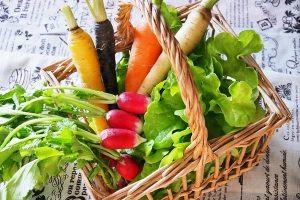 野菜の宅配 料金 比較 安全