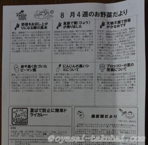 らでぃっしゅぼーや 定期宅配 ぱれっと 野菜 口コミ 評判 体験談