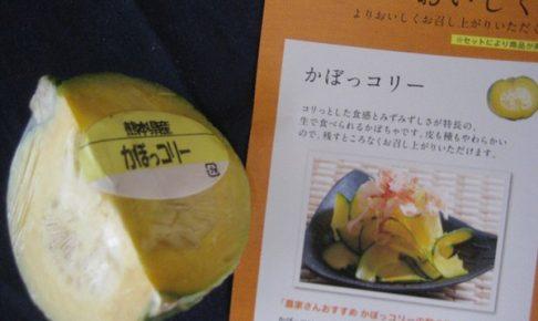 おいしっくす oisix 野菜 メリット デメリット 評判 口コミ お試しセット