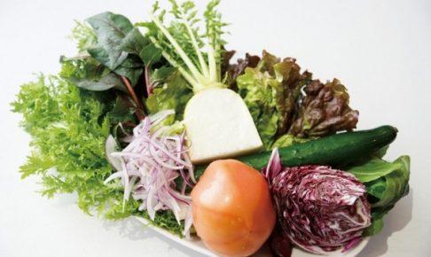 宅配 野菜 安全性