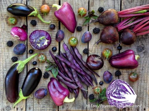 お試し野菜宅配を比較