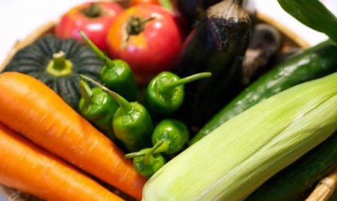 野菜宅配 お弁当 食材