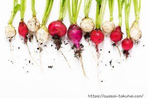 契約農家が作った土付きの新鮮野菜
