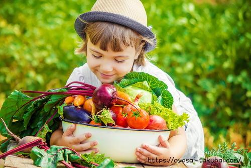 両手いっぱい、元気に野菜を抱える女の子