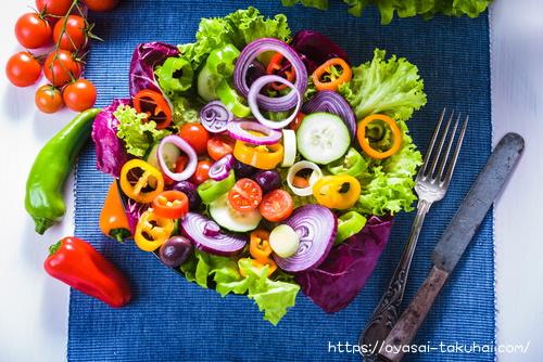らでぃっしゅぼーやの野菜で作ったサラダ